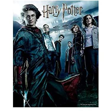 Visual Echo 3D Effect Harry Potter Goblet of Fire 500pc Lenticular Puzzle