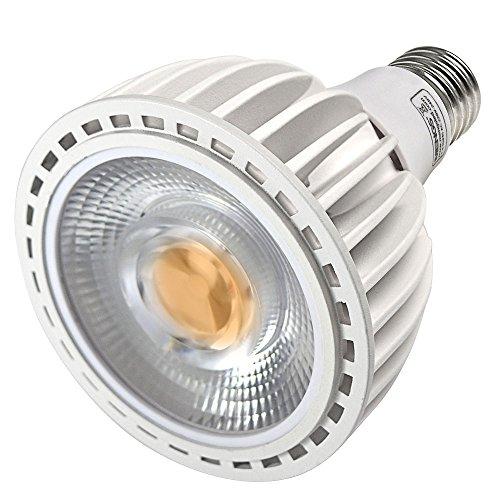 DASKOO E27 LED PAR30 Licht 40W LED Lampen Ersatz für 320W Halogenlampen 4000lm Neutralweiß 4000K AC 220-240V Aluminium + PC COB LEDs