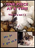 ONE PIECE IN A TIME: This is a cat ! 3