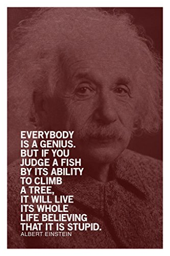 Albert Einstein Everybody is A Genius Motivational Inspirational Quote Maroon Cool Wall Decor Art Print Poster 24x36