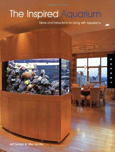 Best Aquarium Design Ideas