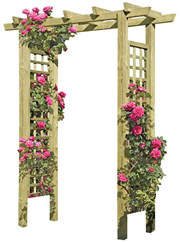 Gartenpirat -   Eingangspergola 160