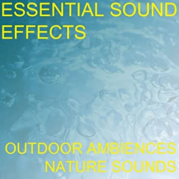 Essential Sound Effects 1 - Outdoor Ambiences, Nature Sounds