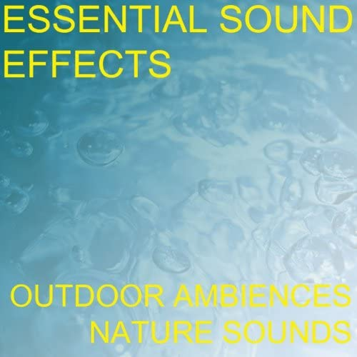 Essential Sound Effects