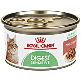 Royal Canin Feline Care Nutrition Digest Sensitive Thin Slices In Gravy Canned Cat Food, 3 oz Can (Pack of 24)