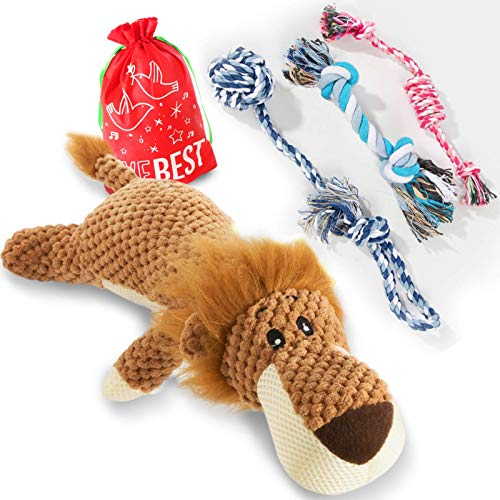 Dog Toys, Squeaky Puppy Toy, Interactive Stuffed Lion Plush Toy and Durable Rope Chew Toys Pack for Small,Medium Dogs
