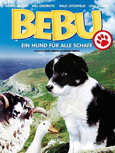 Bebu - Ein Hund für alle Schafe