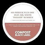 Passion feat. Mr. White (DJ T. Remix Instrumental)