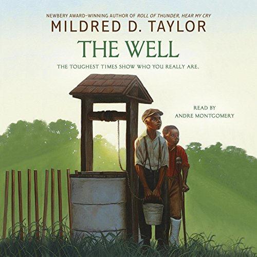The Well Audiobook By Mildred D. Taylor cover art