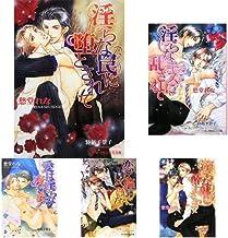 淫らシリーズ (B‐PRINCE文庫) 1-11巻 新品セット