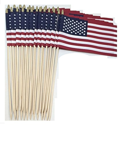 Lot of -24-12x18 Inch US American Hand Held Stick Gravemarker Flags WindStrong with Spear Tip 30 Inch Pointed Bottom Dowel Made in the USA