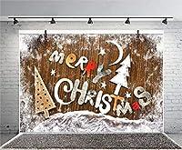 Qinunipoto クリスマス 背景 撮影 撮影背景 撮影用 背景布 プロ級写真撮影用 撮影用バックペーパー 人物撮影 子供撮影 背景シート メリークリスマス 写真館 撮影スタジオ用 パーティー ビニール製 1.5x1m