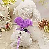 Conjuntos de Collares de Correas para Perros Alas de ángeles Design Pet Correa para Perros Plomo para Perros pequeños Gatos Arnés para Perros Ajustable Mascota al Aire Libre Tamaño del Producto: M