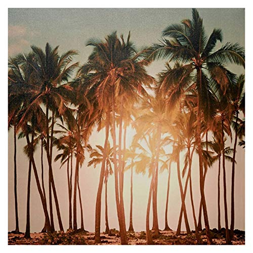 5D Diamond Painting Kits for Adults, Blue Castle Reflection 5D Diamond Painting Kits Christmas, DIY Embroidery Cross Stitch Painting for Home Wall Decor (Color : Sunny Coconut Tree)