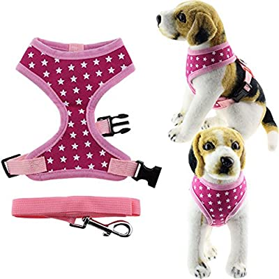Bolbove Pet Adjustable Stars Mesh Harness and Leash Set for Cats & Small Dogs