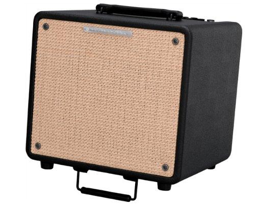 Ibanez T80N Troubadour Serie Akustik Verstärker (80 Watt)