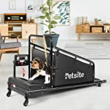 PETSITE Dog Treadmill, Pet Dog Fitness Treadmill for Indoor Exercise with Remote Control & Display Screen