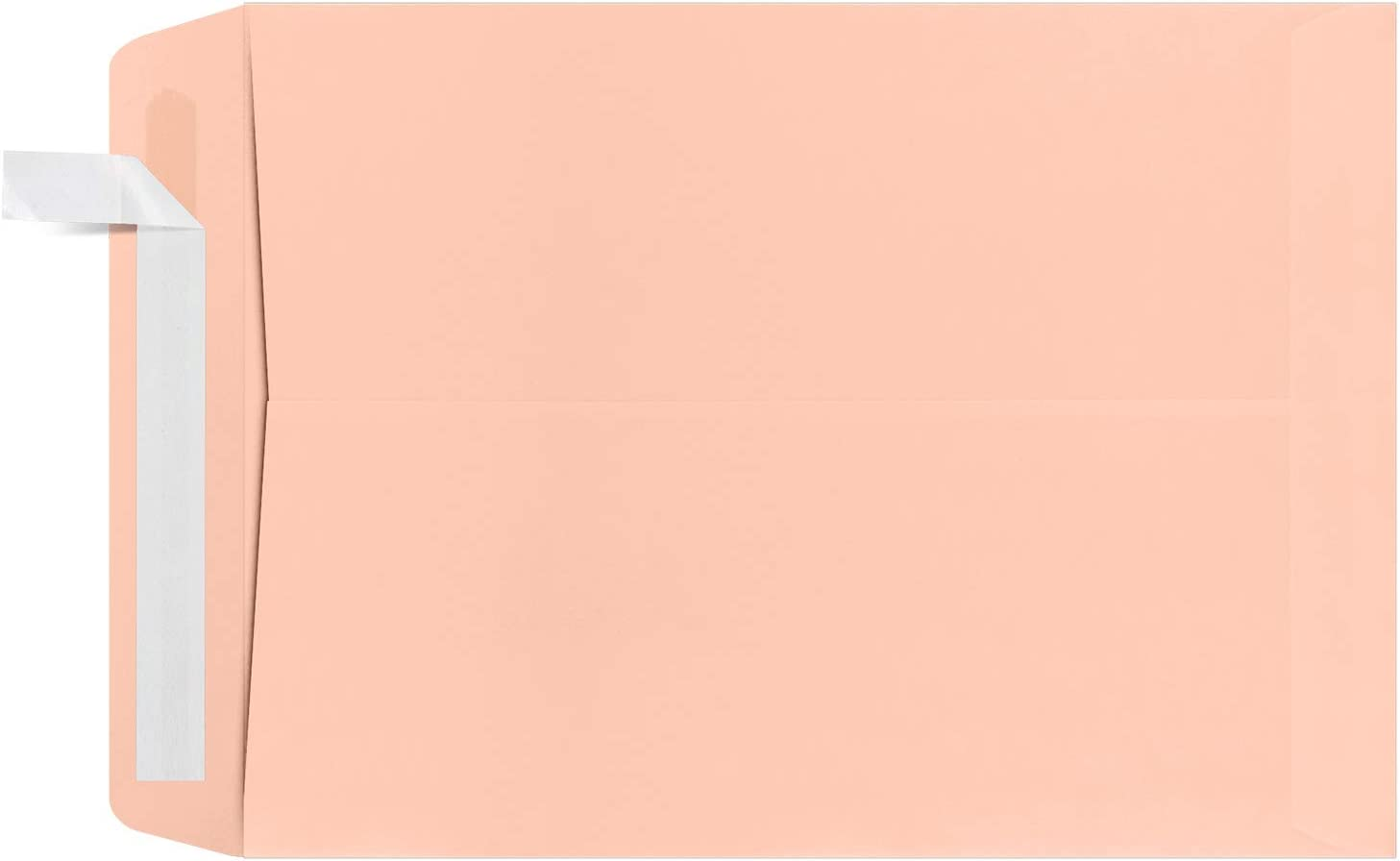 9 x 12 Open End Chicago Mall Selling rankings Envelopes - Perfect Qty 1000 Blush Sendi for