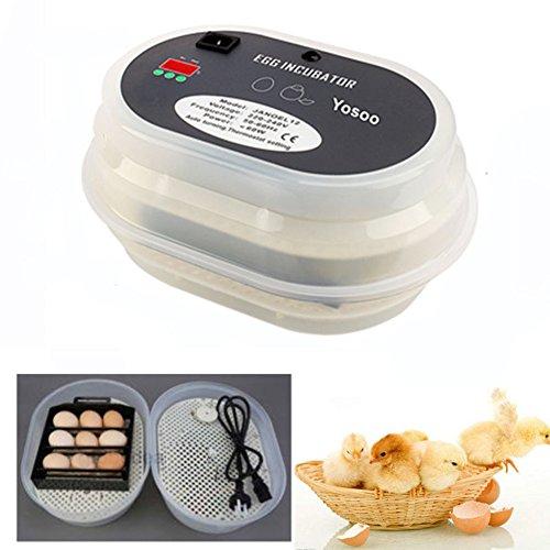 GOTOTOP - Incubadora con Pantalla Digital y Control automático para Huevos de Volailla y pájaros, Pollo y Pato