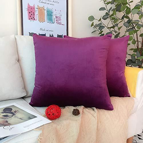 LAXEUYO Juego de 2 Terciopelo Funda de Cojine 50x50 cm Decoración Almohada Caso de la Cubierta Decorativopara Sala de Estar Sofá - Purple