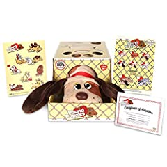 Authentic reproductions of the original pound puppies from the 1980'S! Adopt and name your very own pound puppy! Super soft plush pound puppies are the perfect size and shape to hug and cuddle! Includes sticker sheet, name tag and adoption Certificat...