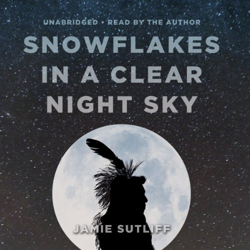 Snowflakes in a Clear Night Sky