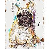 SiJOO Pittura Digitale Fai da te40x50 Bianco Cigno Animale Tela Camera Arte Decorativa Immagine Regalo