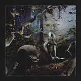 FEET OF CLAY (Vinyl)