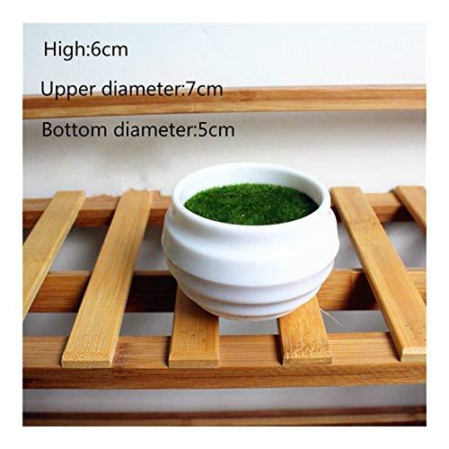 HUIJUNWENTI 1Pc Multistyle Mini Blumentöpfe Quadrat Rund-Pflanzer-Topf-Behälter aus Kunststoff Töpfe kreative kleine Töpfe for Sukkulente Gartendeko (Color : Tiaowen yuanpen)