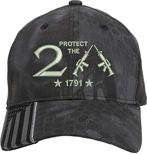 AmazingShirts Protect The 2nd Amendment 1791 AR15 Guns Right Freedom Embroidered One Size Fits All Structured Hats (KryptekBlack/Silver)