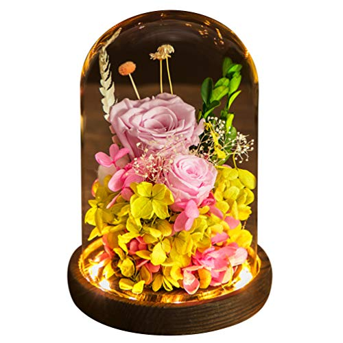 Mobestech Beauty And The Beast Rose, Pink Preserved Rose in Glass Dome, Enchanted Rose Light for Lover Valentines Day (1Pcs, Pink, Random Style)