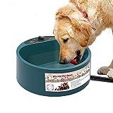 PETEMOO Ciotola per Acqua per Animali Riscaldata, Ciotola per Cani per Cani, A Prova di Pe...