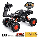 MaxTronic RC Crawler Car Toy Gift for 5-12 Years Old Kids, 1:16 4WD Remote Control Car All - Terrain High...
