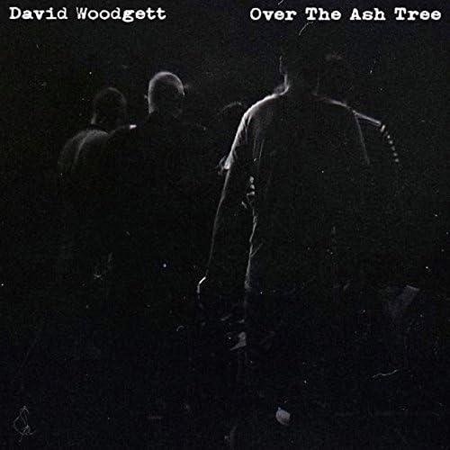 David Woodgett