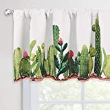 KGORGE Valance for Window, Cactus Print Floral Curtain Valances for Den Kitchen, Café Curtains Topper Rod Pocket Sunlight Block Green Home Decoration for Bathroom, Wide 50 x Long 18 inches, 1 Panel