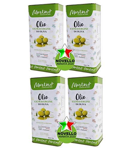 Frantoio Oleario Martino Alfonso - Olio Extra vergine di oliva 100% Italiano estratto a freddo - Lattina 5 Litri (20...