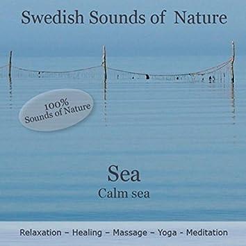 Swedish Sounds of Nature - Sea