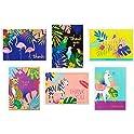 24-Pack Hallmark Tropical Animals Thank You Cards Assortment