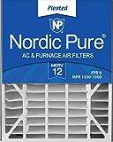 Nordic Pure 20x25x5ABM12-1 Merv 12 Air Bear Replacement