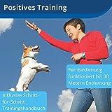 Belohnungs Leckerli Hundetraining, 30Meter Reichweite, für Welpen & Hunde - 2