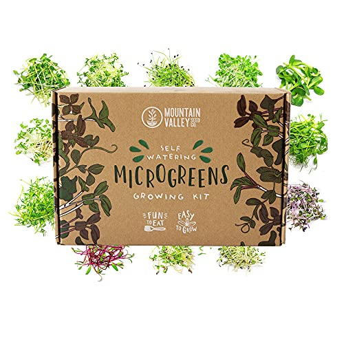 Self Watering Indoor Microgreens Kit