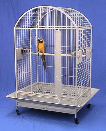 """Extra Large Wrought Iron Bird Cage Parrot Cages Macaw Dometop 36""""x26""""x65"""" (Egg Shell White)"""