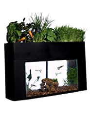 The AquaSprouts Garden is a self-sustaining aquarium & aquaponics kit for the home, office or school Fish fertilize the plants. Plants clean the water for the fish. Fits any standard 10-gallon aquarium Grow a variety of veggies, herbs, greens and dec...