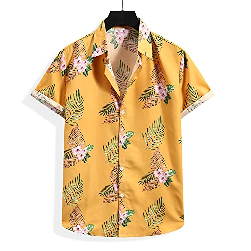 Camisa Hombre Verano A Rayas Tapeta con Botones Cuello Kent Camisas Ocio Casual Ligero Cómodo Hombres Camisa Urbana Moderna Fiesta Hombres Manga Corta D-004 XL