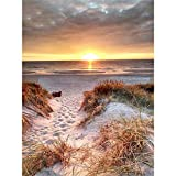 Paisaje costero de playa﹣juegos de pintura por números﹣Kit de Pintura al óleo de Lienzo acrílico﹣manualidades para decoración de paredes del hogar﹣40x50cm﹣(Sin marco)