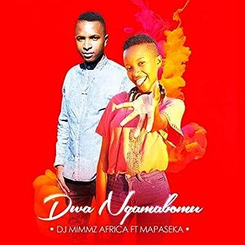 Dwa Ngamabomu (feat. Mapaseka)
