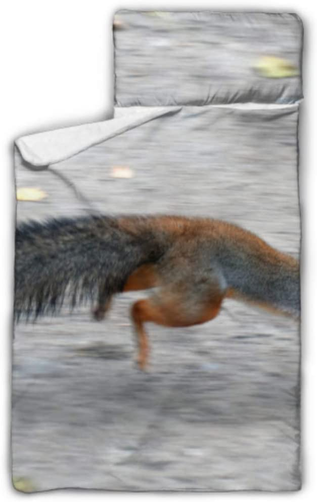 High quality Kids Max 62% OFF Sleeping Bag Hurry Furry Red On Nap Mat Squirrel wi Running