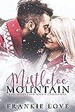 Mistletoe Mountain: The Mountain Man's Christmas