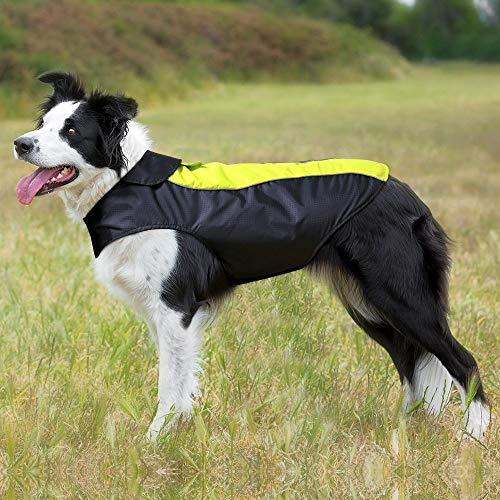 Hund Regenmantel Dog Jacke Wasserdicht Winddicht Wendemantel Pet Regenmantel Warm Fleece Gefüttert Night Sicherheit Reflektierende Paspeln für kleine medium Große Hunde von Bseen (grün), L, grün