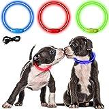 LED Leuchthalsband für Hunde USB Wiederaufladbar LED Hundehalsband Längenverstellbar 3 Leuchtmodis Leuchtend Wiederaufladbares Halsband (Blau)